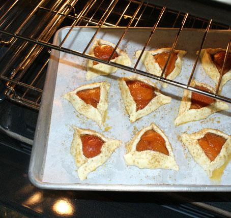 apricot-tart-bake