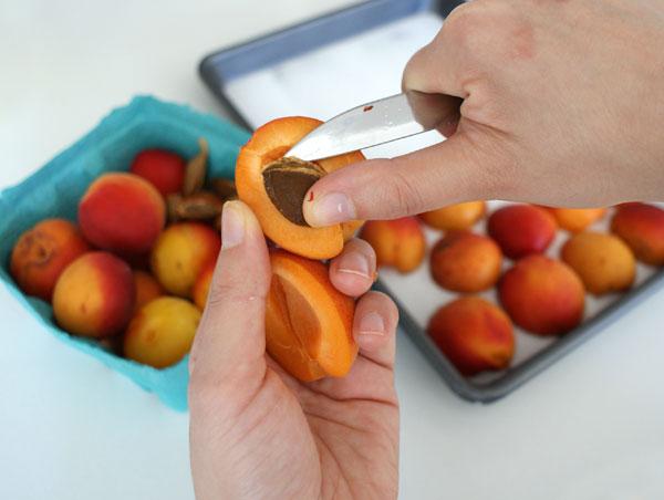 apricot-tart-pit