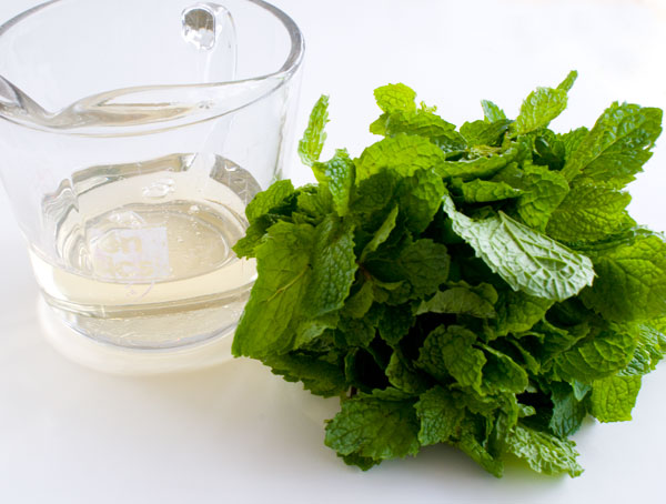 mint-syrup-ingredients