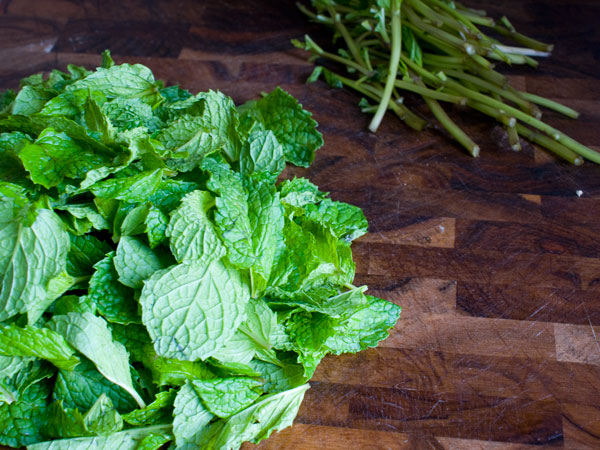 mint-syrup-pick-leaves